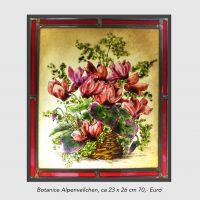 Botanice Alpenveilchen