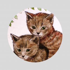 Katzenpaar rd